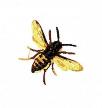 Bee brother embroidery machines free designs