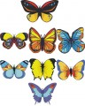 Butterflies Embroidery designs-Embroiderydesigns.name