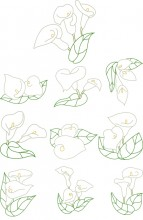 Calas embroidery Designs