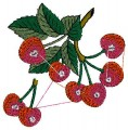 Fruits Embroidery Design